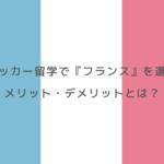サッカー留学で『フランス』を選ぶメリット・デメリットとは?