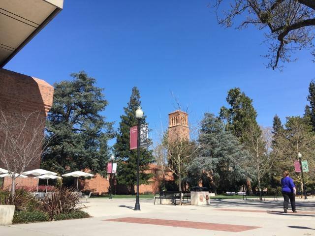 アメリカの大学風景の画像