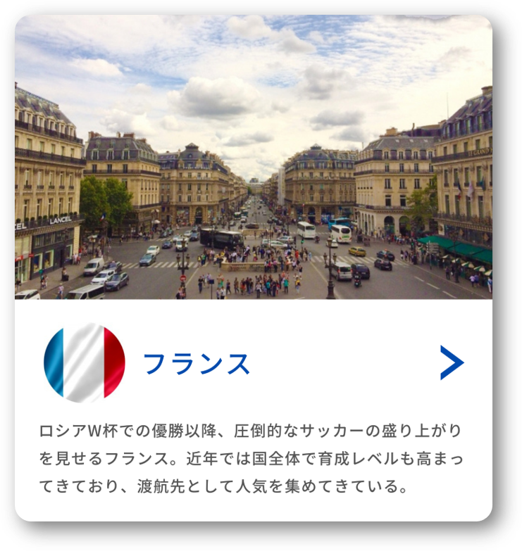 留学先の国(フランス)